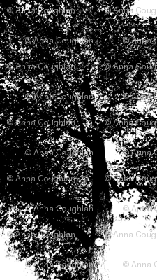 Black_Tree