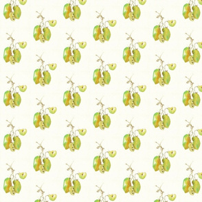 fallfruit