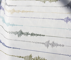 Earthquake! Seismograph in Earth Tones