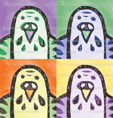Parakeet Portraits