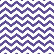 Chevron-purple_shop_thumb