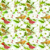 Rrmagnolia_birds_shop_thumb