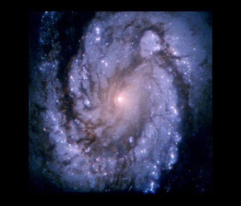 Rrnasa_hubble_spiral_galaxy_m100_thestarladyscloak_shop_preview