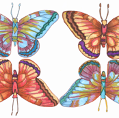 butterfly_fabric_final-001