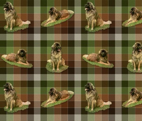 Rrrleonbergertartan1_full1a_shop_preview