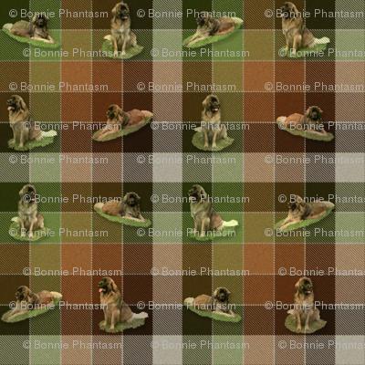 Leonberger Tartan - small