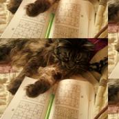 Sudoku Cat