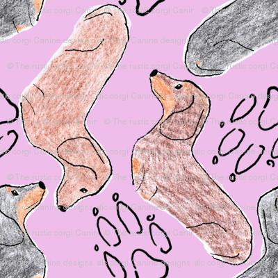 Dachshund zigzag - lavender