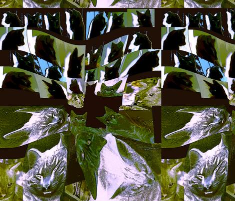 cattitudes_10m fabric by oscarwilde on Spoonflower - custom fabric