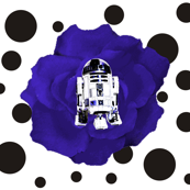 R2 Blue Rose on Black & White Polka