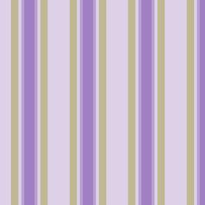eggplant stripe 2