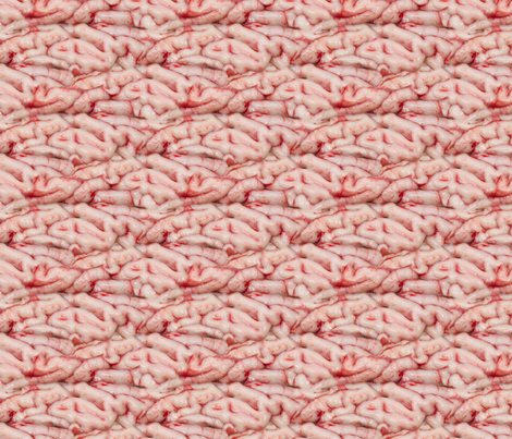 brains fabric by hannafate on Spoonflower - custom fabric