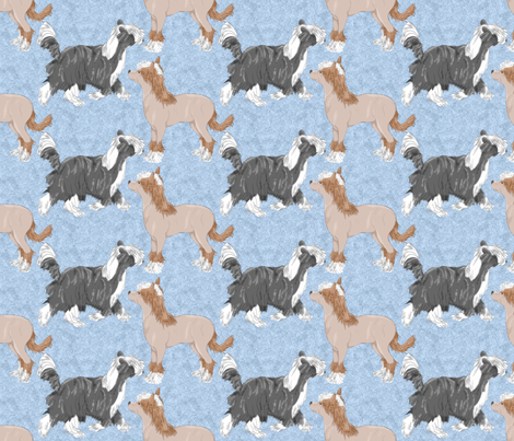 Chinese crested puppies - blue fabric by rusticcorgi on Spoonflower - custom fabric