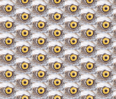 hawkeye fabric by fleaflea on Spoonflower - custom fabric