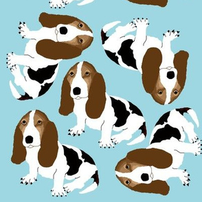 Basset Hound on Light Blue