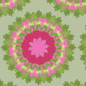 beet circles