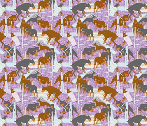 Versatile Dobermans - purple