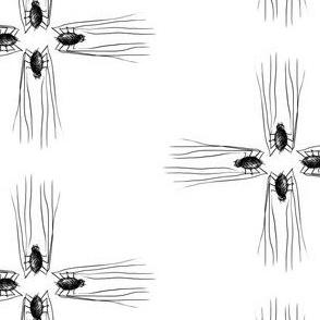 Spidercross