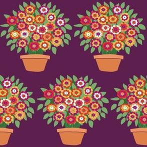 small plum flowerpot