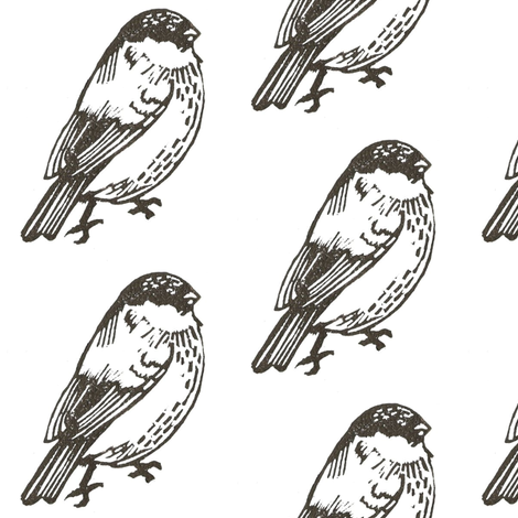 Bullfinch_b_w01 fabric by robin's_room on Spoonflower - custom fabric