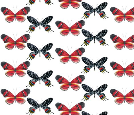 Red_and_black_butterfly_wallpaper_copy_shop_preview