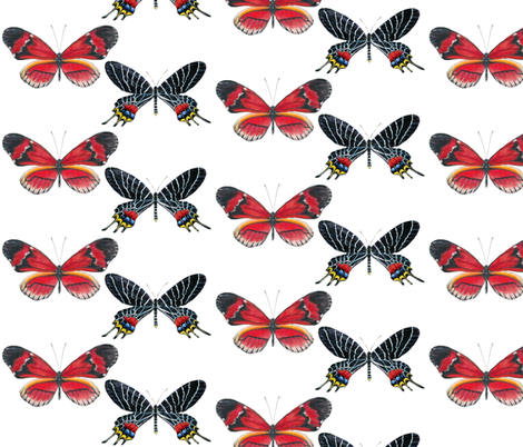 "Red ""Postman"" Butterfly fabric by angelaanderson on Spoonflower - custom fabric"