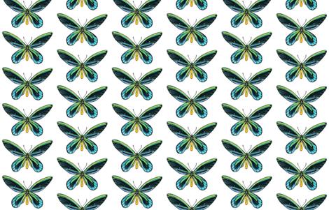 Birdwing Butterfly fabric by angelaanderson on Spoonflower - custom fabric