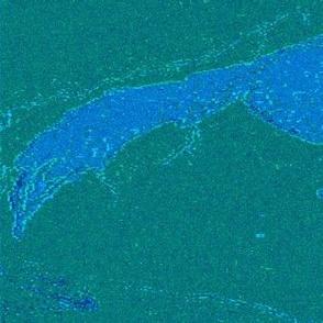 Lightning's Hour Fox