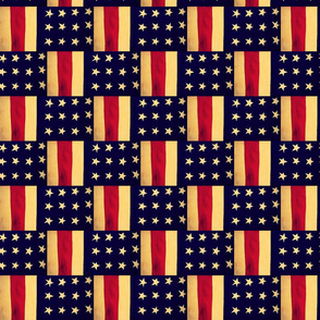 Old American Flag Weave by Cindy Wilson