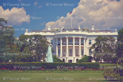 White_house__blue_sky_faded_big5_preview