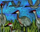 Sandhill_cranes_edited-1_ed_thumb