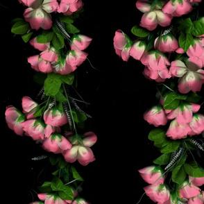 Fiaba Roses