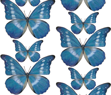 15x15_Blue_Butterfly_Decal fabric by angelaanderson on Spoonflower - custom fabric