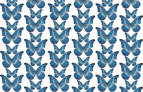 Rrrr15x15_blue_butterfly_decal_shop_preview