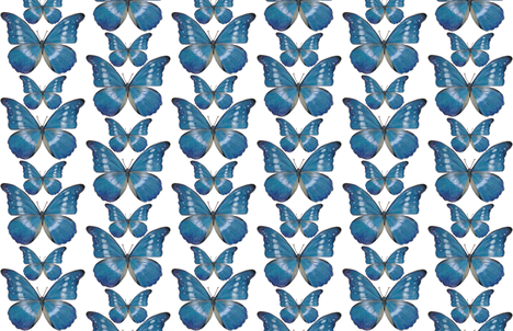 Blue Morpho Butterfly fabric by angelaanderson on Spoonflower - custom fabric