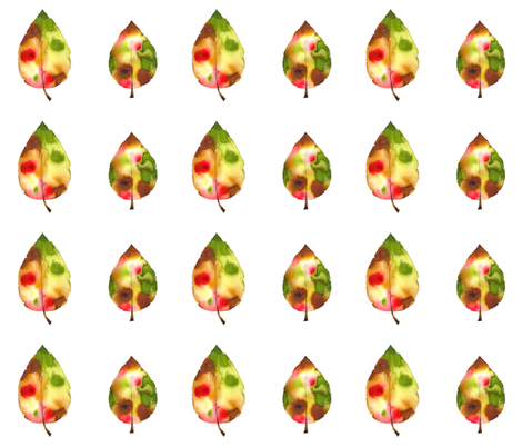 Autumn Leaves fabric by cmcreations on Spoonflower - custom fabric