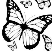 Butterfliesmultibypinksodapop_shop_thumb