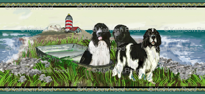 Newfoundland border seascape