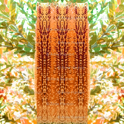 banksia_screen