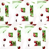 Rrberries_shop_thumb