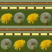 Rrdandelions_shop_thumb