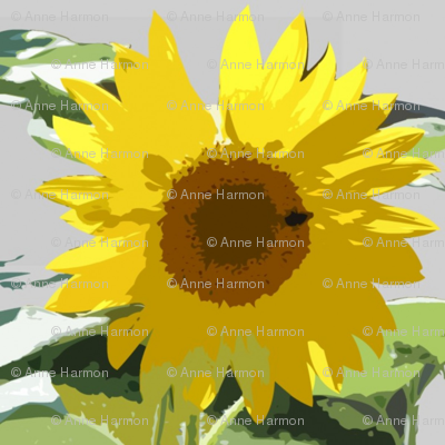 garden_sunflower