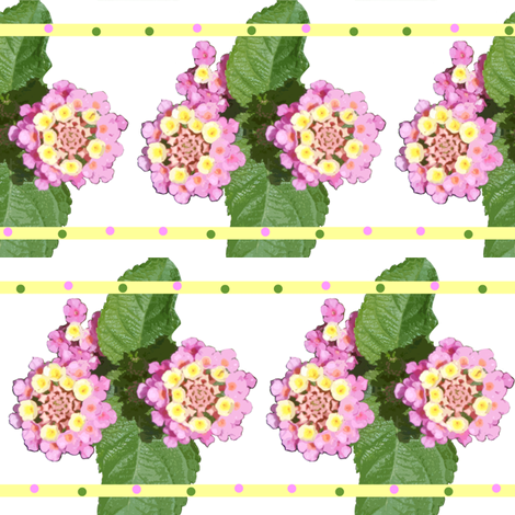 lantana fabric by bosun on Spoonflower - custom fabric