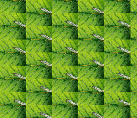leaf_veins fabric by bosun on Spoonflower - custom fabric