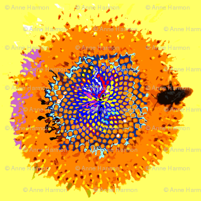 orange_sunflower_center