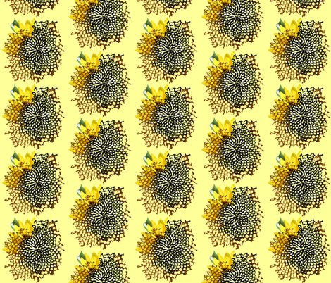 Rrsunflower_swirl_shadows_shop_preview