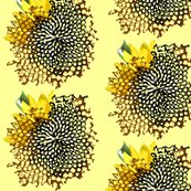 Rrsunflower_swirl_shadows_shop_thumb