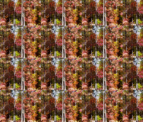 photo-6 fabric by amandamaddox on Spoonflower - custom fabric
