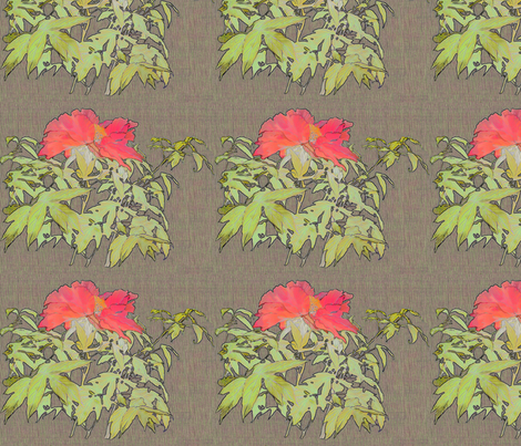 peony-coral-fibers-band fabric by wren_leyland on Spoonflower - custom fabric