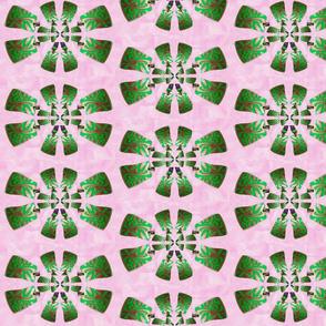 Pink Propeller Flower